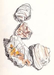 worn shells
