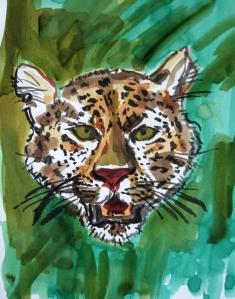 amur leopard s