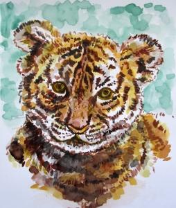 south china tiger s