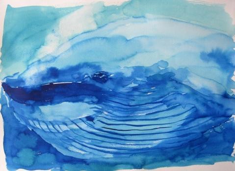 blue whale s