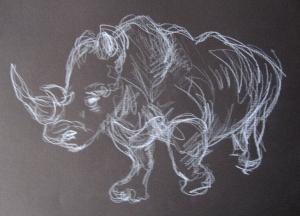 white rhino 2s