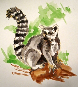 ring-tailed lemur s