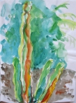watercolor cactus s