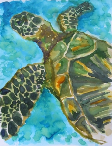 green sea turtle s