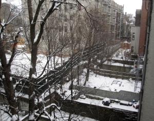 snow 2015 2s