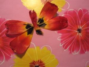 petal butterfly 2s
