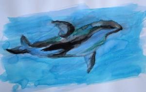 vaquita painting s