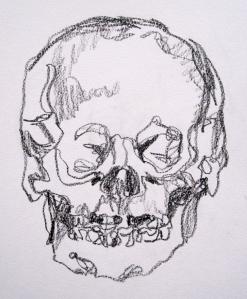 skull 1 don't lift s