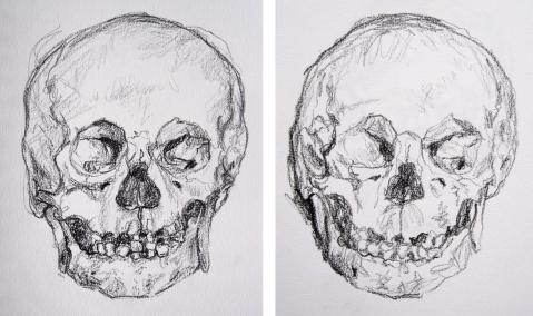 skull comp