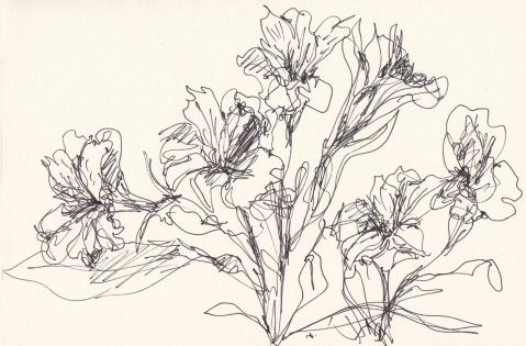 flowers june 15 s