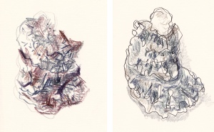 oyster shells 2015 comp