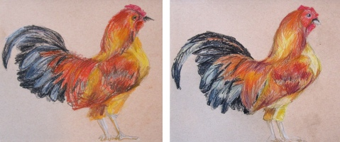 chickens pencil craypas