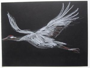 crane black sky s