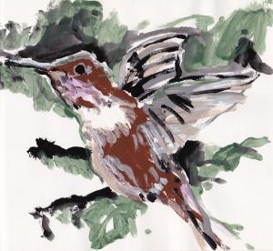 hummingbird 1989 s