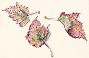 leaves 1s