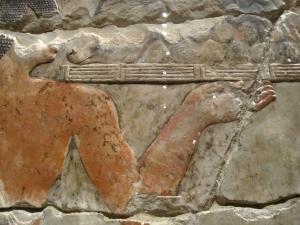 egypt hands 6s