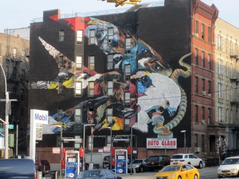 bird mural 3bs