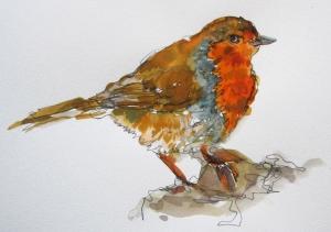 eu robin painting s