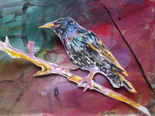 painted starling close up s
