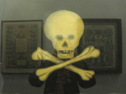 skull with reflection s