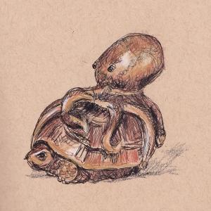 turtle octopus netsuke s