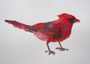 gouache cardinal s