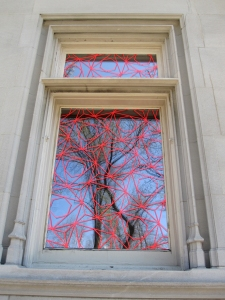 tree window 1s