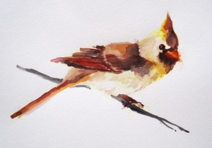 watercolor cardinal s