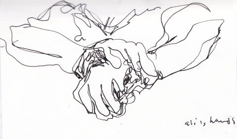 ali's hands