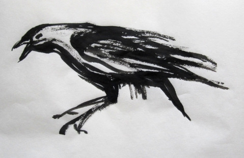 crow 1s