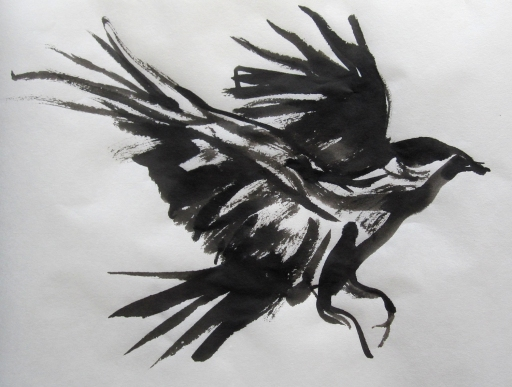 crow 4s