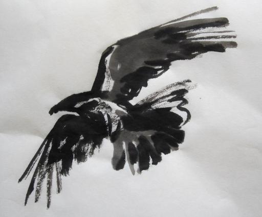 crow 5s