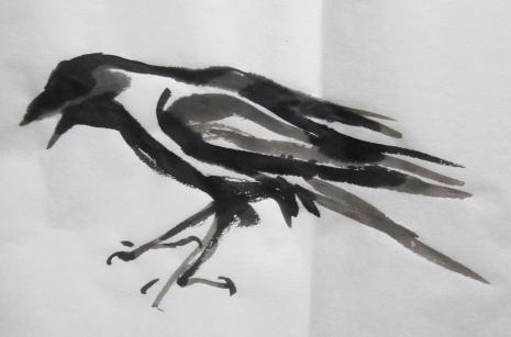 crow 6s