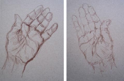 palms comp