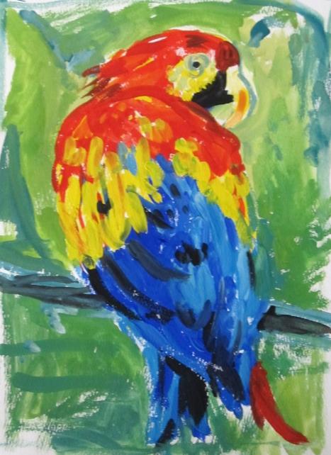 parrot-s