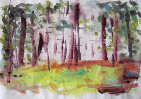 foggy-woods-s
