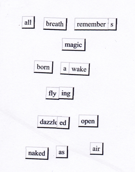 born awake magnetic