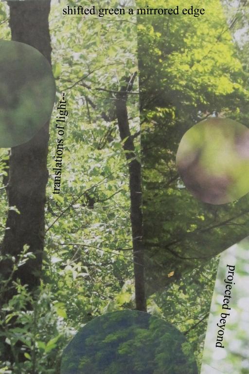 summer forest 4 x 6 text