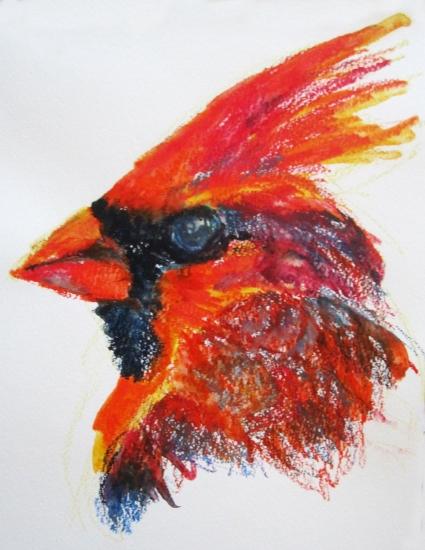 cardinal head s