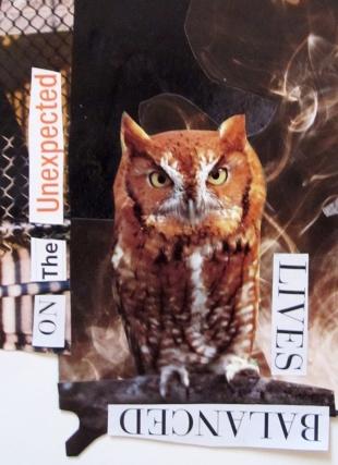 owl s2