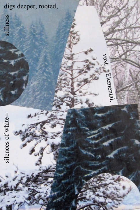 winter forest 2 4 x 6 text comma