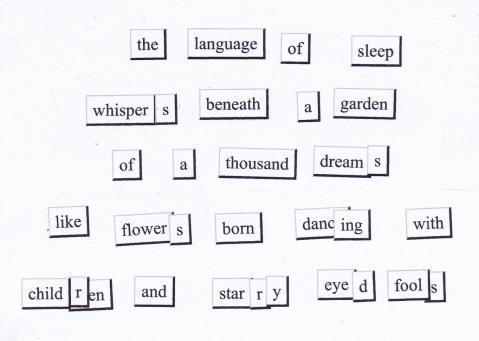 the language of sleep magnetic