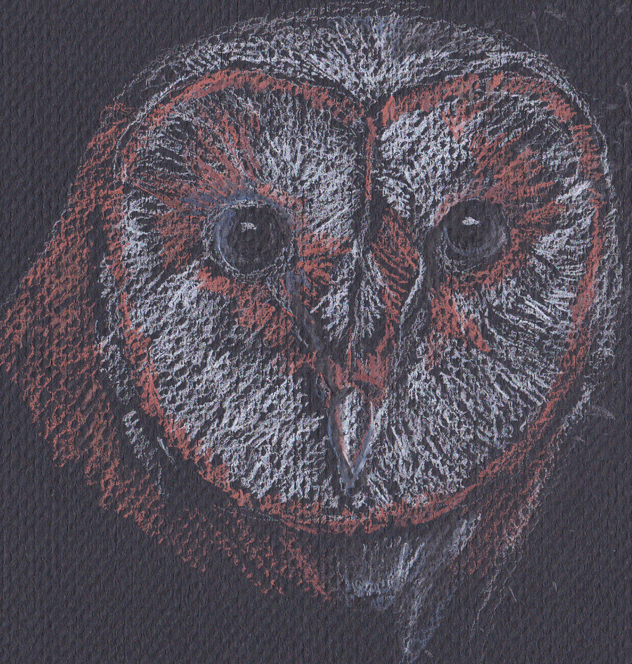 ghost owl face s