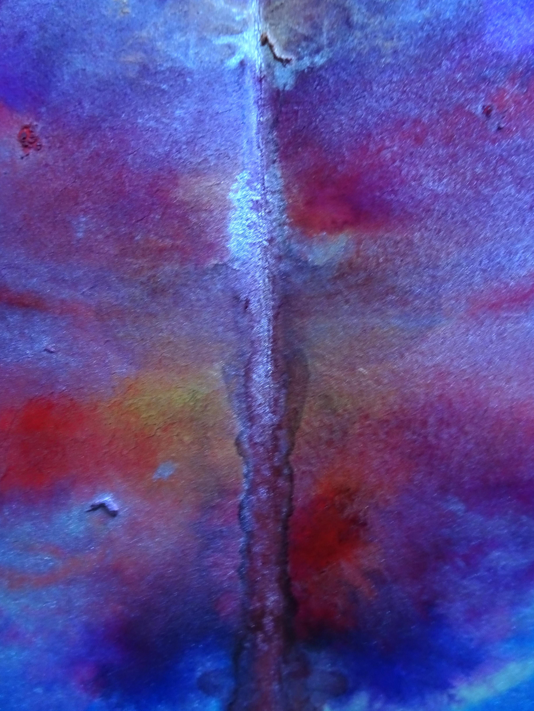hom close up 2