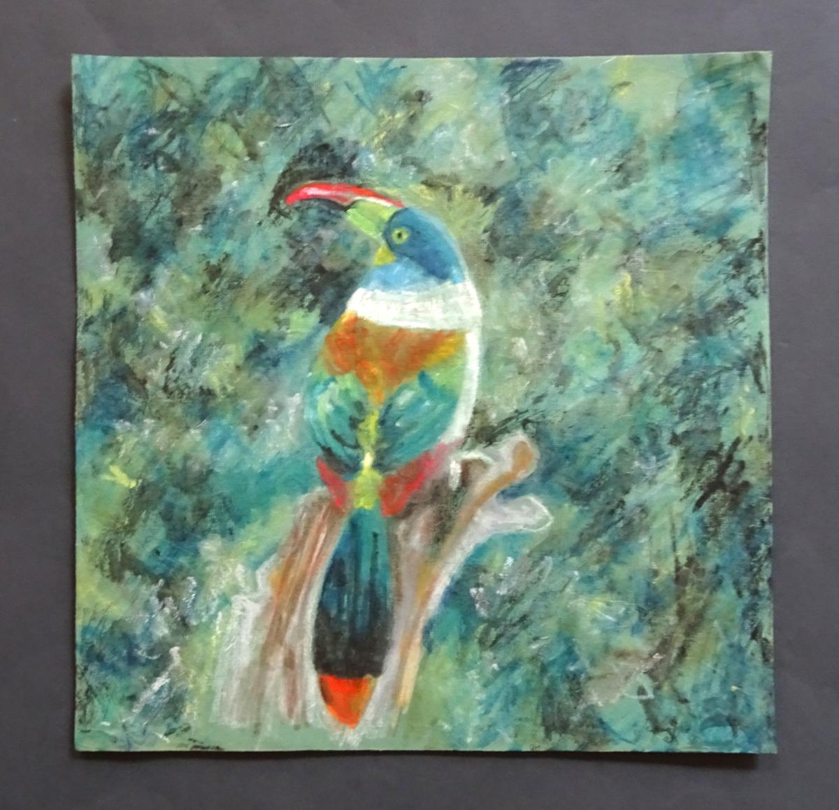 mountain toucan s