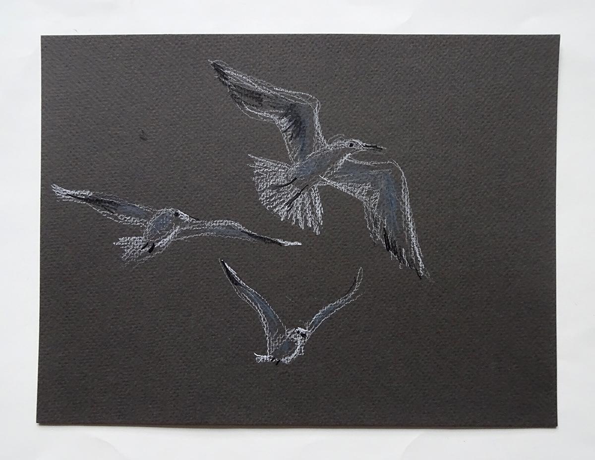 seagull 3s