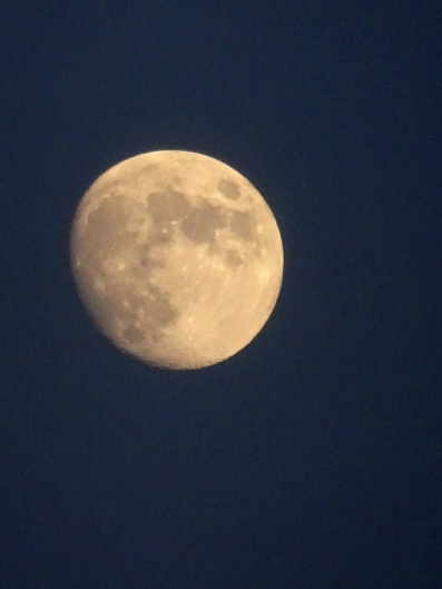 almost full moon july 2020 s