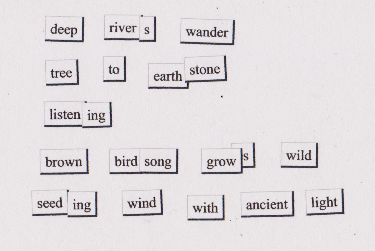 wren magnetic